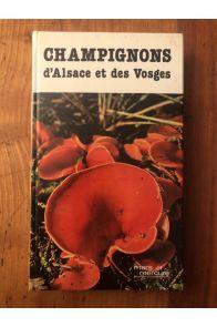 Champignons d'Alsace et des Vosges